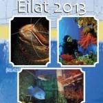 Eilat2013